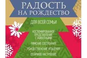 Радость на Рождество